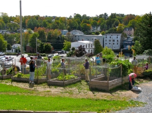 Hodge Podge Community Garden