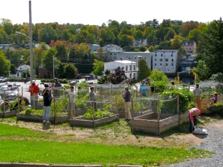 Hodge Podge Community Garden